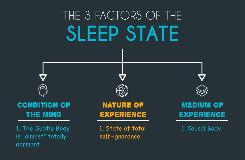 3 Factors of the Sleep State