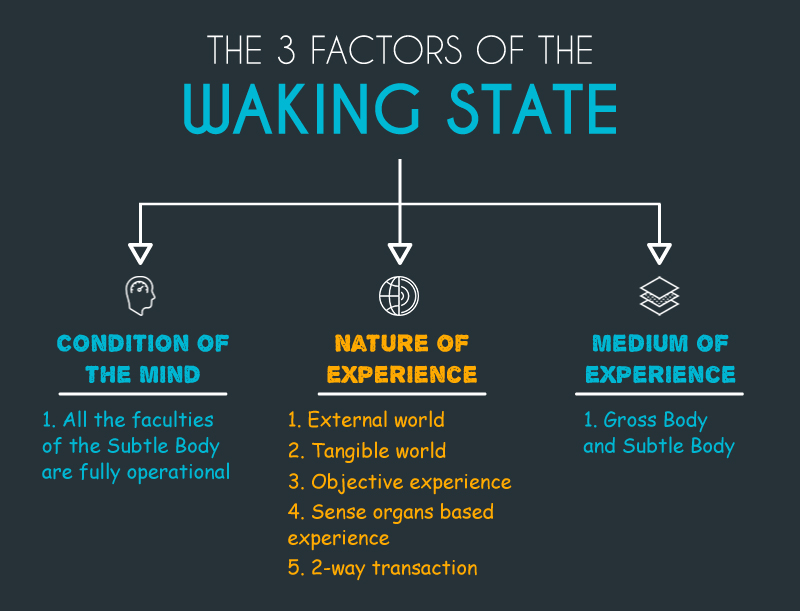 3 Factors of the Waking State