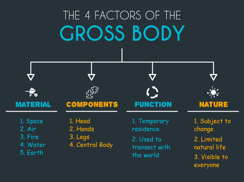 4 Factors of Gross Body