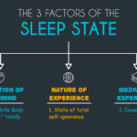 The 3 Factors of the Sleep State
