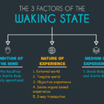 The 3 Factors of the Waking State