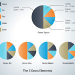 The 5 Gross Elements