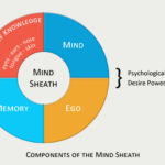 Components of the Mind Sheath