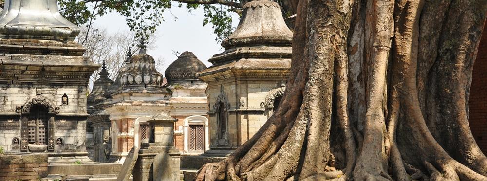 ExploreVedanta.com header image