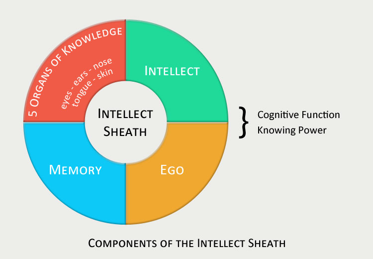 Intellect Sheath