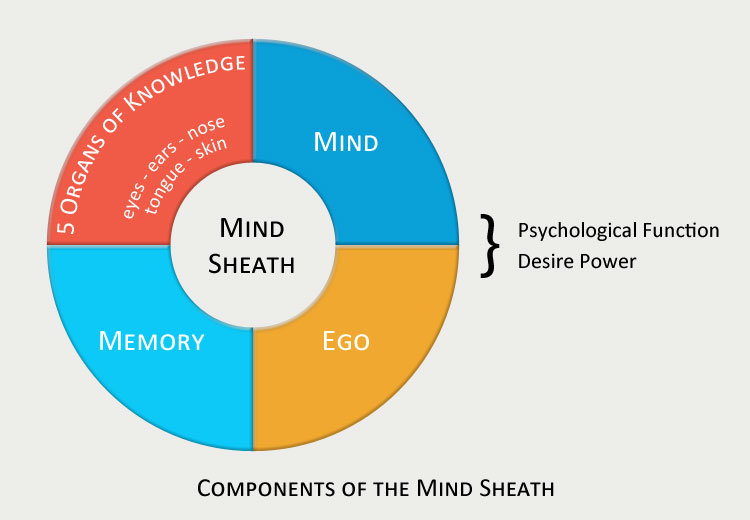 Mind Sheath