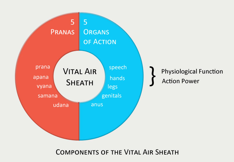 Vital Air Sheath